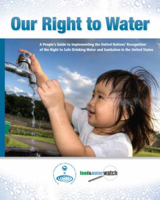 Our Right To Water: A People's Guide To Implementing The United Nations' Recognition Of The Right To Safe Drinking Water And Sanitation In The United States